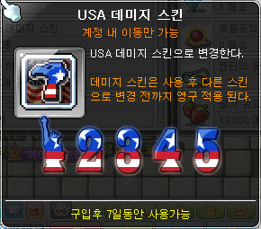 USA Damage Skin