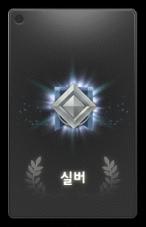 Silver Insignia