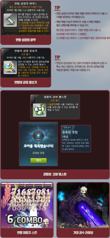 Guardian Special Items