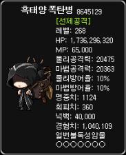 Black Sun Bomber