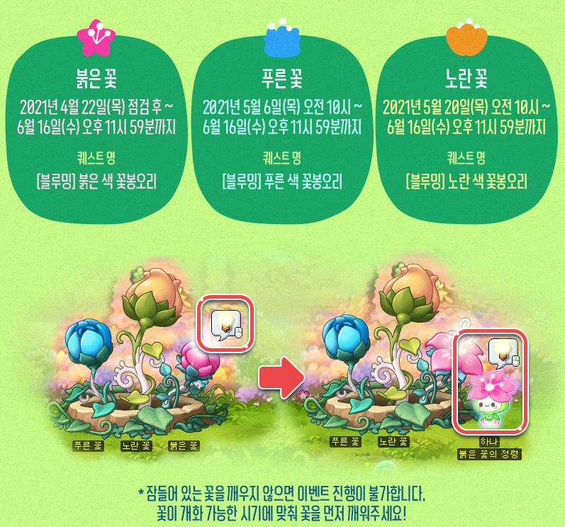 Three Blooming Flowers